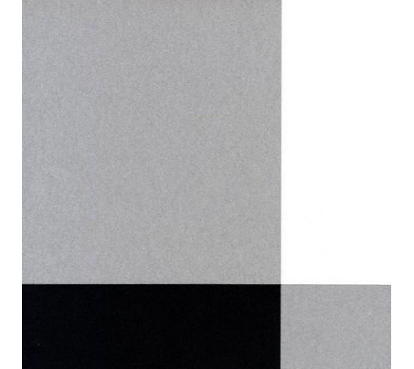 обои Caselio Black and White BTW6103-90-06