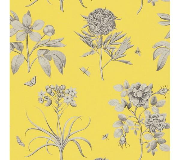 обои Sanderson Parchment Flowers DPFWER104
