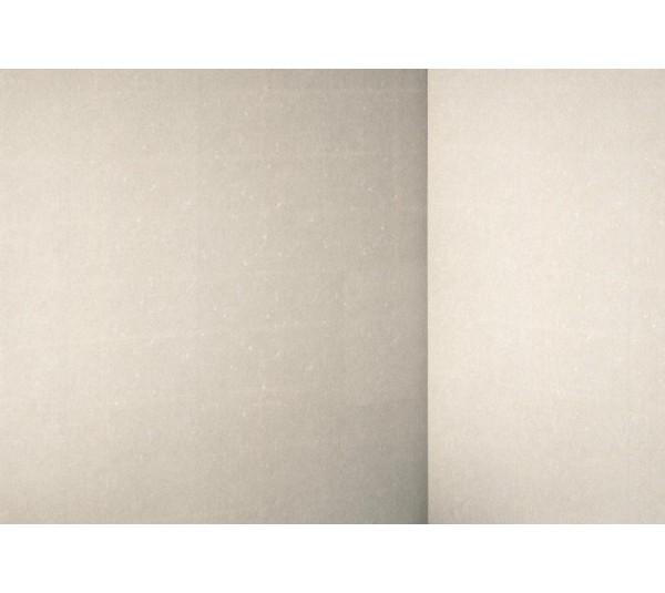 обои Rasch Textil Tintura 227276