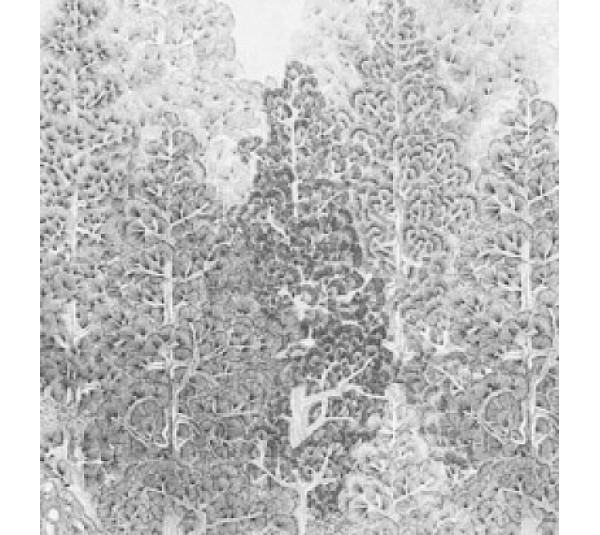 обои Khroma Misuto DGMIS1022 Sansui Grey